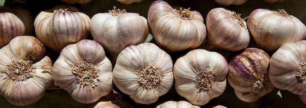 Garlic plaits, violet, on sale at food market in Bordeaux region of France