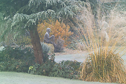 View towards 'Boy on a Rock' bronze statue by Jane Hogben. Molinia caerulea subsp. arundinacea 'Transparent and Cedrus deodara - Cedar in the foreground.