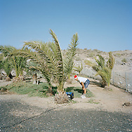 Gran Canaria, Spain. Norwegian checking the generator providing electricity for the amplifier and instruments at the annual Christmas service at La Plaza Noruega. La Plaza Noruega is a small, remote spot given to the Norwegian community by the local authorities. Here the Norwegians have planted a few palm trees and put up some tables and benches. <br /> Photo by Knut Egil Wang/Moment/INSTITUTE