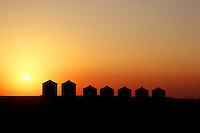 Grain bins silhouetted against sunset, southern Saskatchewan