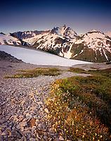 Mount Shuksan and Nooksack  Ridge from Hannegan Peak, Mount Baker Wilderness Washington USA