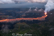 Aerial view of Kilauea Volcano east rift zone erupting hot lava from Fissure 8 in Leilani Estates subdivision near the town of Pahoa. The lava drains downhill as an incandescent river to Kapoho, Puna District, Hawaii Island ( the Big Island ), Hawaiian Islands, U.S.A.
