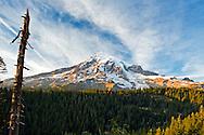 Mount Rainier alpenglow from Ricksecker Point in Mount Rainier National Park, Washington State, USA