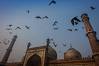 NEW DELHI, INDIA - CIRCA OCTOBER 2016: Jama Masjid Mosque in Delhi. Constructed in red sandstone and white marble the mosque is a popular tourist attraction in Delhi.