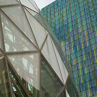 The Amazon Biosphere glass domes next to a sleek glass-clad skyscraper.