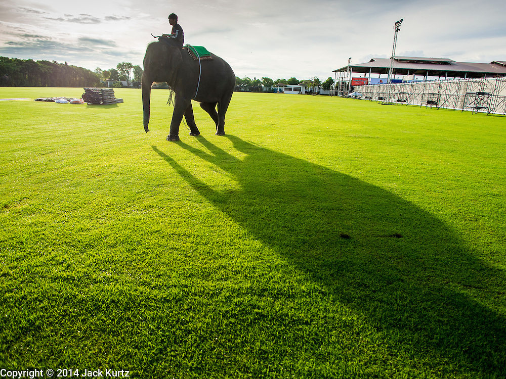 "28 AUGUST 2014 - BANGKOK, THAILAND:      A  mahout and his elephant walk into the King's Cup Elephant Polo Tournament at VR Sports Club in Samut Prakan on the outskirts of Bangkok, Thailand. The tournament's primary sponsor in Anantara Resorts. This is the 13th year for the King's Cup Elephant Polo Tournament. The sport of elephant polo started in Nepal in 1982. Proceeds from the King's Cup tournament goes to help rehabilitate elephants rescued from abuse. Each team has three players and three elephants. Matches take place on a pitch (field) 80 meters by 48 meters using standard polo balls. The game is divided into two 7 minute ""chukkas"" or halves.    PHOTO BY JACK KURTZ"