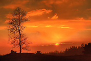 Portfolio Natuur- en Landschapsfotografie