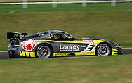 Ross Lilley & Greg Crick .Dodge Viper GT3.Motorsport/2008 Shannon Nationals.Australian GT Championship - Sandown GT Classic.Sandown International Raceway, Melbourne, Victoria.30th November 2008.(C) Joel Strickland Photographics.