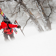 Lynsey Dyer hikes to untracked powder during a major winter storm in the Tetons.