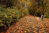 OCTOBER 12th:  Aura of Autumn