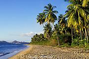 Pinney's Beach, Nevis Island, St. Kitts & Nevis ( Saint Christopher and Nevis ) Lesser Antilles ( Eastern Caribbean Sea ) MR 97 & 98