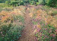 Path thru Flowers, Landcraft Environments, LTD.,Nursey, Mattituck, New York