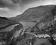 A shepherd drover and his two sheep dogs driving sheep passed the Turnpike Rocks in The Gap of Dunloe, Killarney in County Kerry Ireland long before motorised vehicles arrived.<br /> Picture macmonagle.com