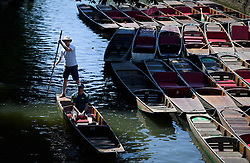 © Licensed to London News Pictures. 19/07/2016. Oxford, UK. Members of the public  out punting, enjoy the summer sun on the River Cherwell in the grounds of Oxford University in Oxfordshire, on what is due to be the hottest day of 2016 so far, with temperatures possibly hitting the mid 30's.  Photo credit: Ben Cawthra/LNP