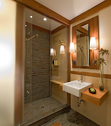 Master Bathroom VA 1-803-266