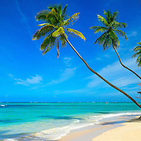 Dream Beaches