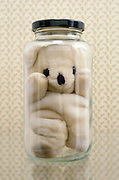 beanie bear in glass jar