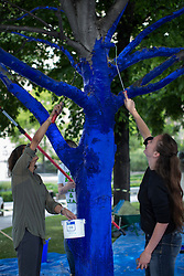 © licensed to London News Pictures. London, UK 25/06/2013. Trees for Cities charity and the City of London creating 'The Blue Trees' environmental art installation at Festival Gardens, next to St Paul's Cathedral as part of the annual City of London Festival. Trees in Festival Gardens being coloured 'blue' using a tree safe colourant.  By colouring the trees blue, Trees for Cities want people to stop and 'notice' the trees, which are so often taken for granted. The installation will raise awareness of the significant decline of our city trees over the last decade, and the threats they face from climate change, pests and diseases. Photo credit: Tolga Akmen/LNP