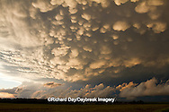 63891-02412 Mammatus clouds after storm,  Marion Co. IL