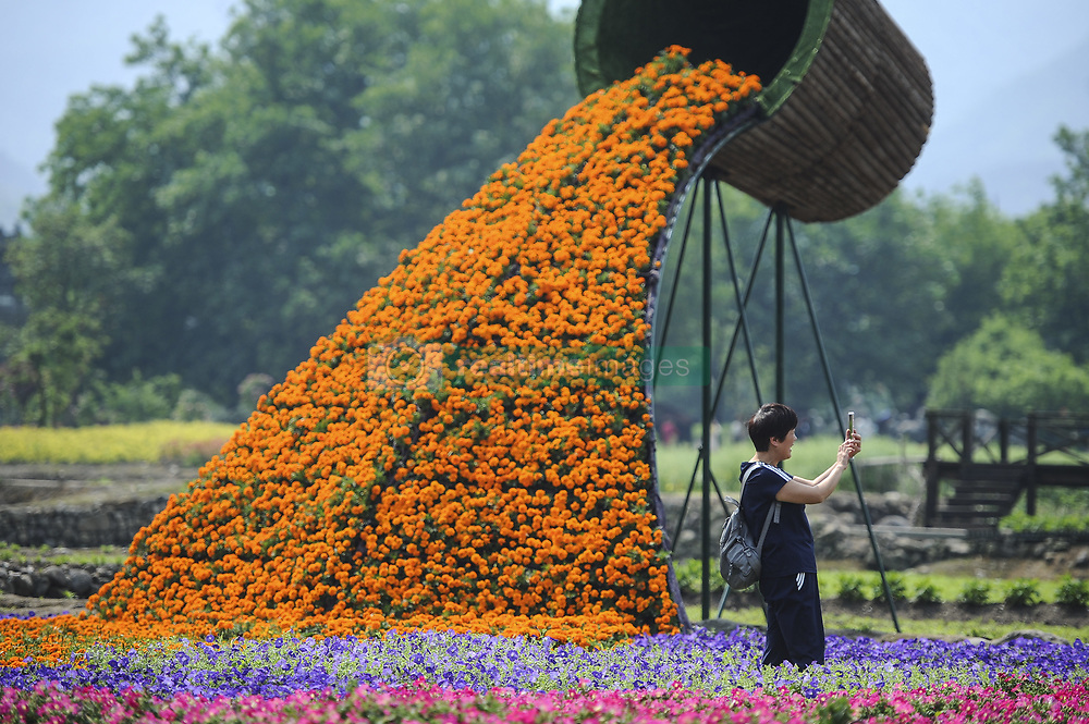 April 27, 2018 - Hangzhou, China - Tourists take selfies as they enjoy flowers of different shapes at the Flower Festival held at Longmen Ancient Town in Hangzhou, east China's Zhejiang Province. (Credit Image: © SIPA Asia via ZUMA Wire)
