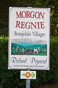 Morgon Regnie, Roland Pignard. Beaujolais, Burgundy, France