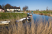 Norfolk Broads landscape at West Somerton, Norfolk, England