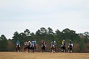 Colonial Cup - Camden, South Carolina. Racing action.