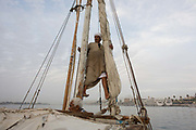 A crewman of a felucca prepares the sail during a journey on the River Nile at Luxor, Nile Valley, Egypt. Feluccas are ancient Egyptian sail boats which were used in ancient times as a primary mode of transport and are the only type of boat that is still used extensively in the country. Plying this great African river is a cheap fare state-run ferry used by commuters and locals but these sailing boats serve tourists and therefore are the many victims of the tourism downturn. According to the country's Ministry of Tourism, European visitors to Egypt is down by up to 80% in 2016 from the suspension of flights after the downing of the Russian airliner in Oct 2015. Euro-tourism accounts for 27% of the total flow and in total, tourism accounts for 11.3% of Egypt's GDP.