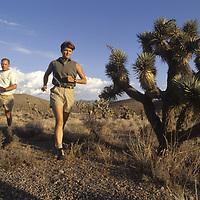 Endurance runners pass Joshua tree in Nevada's Spring Mountains near Las Vegas.