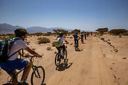 Group cycles in Timna park, Arava, Israel