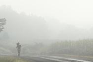 Wawayanda, New York  - A runner moves past corn fields on a foggy September morning. ©Tom Bushey / The Image Works