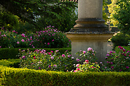 A rose garden surrounding an obelisk at Chiswick House Gardens, Chiswick House, Chiswick, London, UK