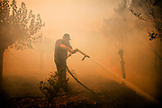 Fireman trying to control the fire in maypia, Greece, on saturday, Sep. 1, 2007