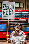 Green Investment Bank Biomass protest