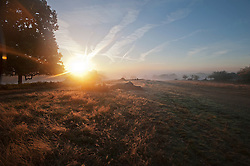 © London News Pictures. 06/10/2013. Richmond, London, UK.  Early morning mist in Richmond Park, West London in  Autumn. The UK is experiencing an unusually warm start to the Autumn with temperatures reaching 20 degrees in parts.  Photo credit: Ben Cawthra/LNP