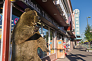 A stuffed bear greets visitors at a shop along 4th Avenue in downtown Anchorage, Alaska.