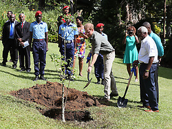 Prince Harry plants a commemorative Baobab tree to mark his visit to the Botanic Gardens in Kingstown, Saint Vincent and the Grenadines, during the second leg of his Caribbean tour.