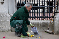 © Licensed to London News Pictures.10/04/2021. London, UK. A worker removes flags and floral tributes that have been left outside Buckingham Palace. Yesterday Buckingham Palace announced that Prince Philip The Duke of Edinburgh passed away in the morning at Windsor Castle . Photo credit: George Cracknell Wright/LNP