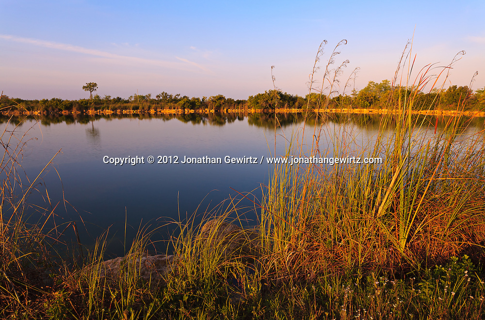 The reedy shore of a tranquil pond in Everglades National Park, Florida. WATERMARKS WILL NOT APPEAR ON PRINTS OR LICENSED IMAGES.