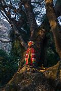 Octavio López, cronista afromexicano y heredero artesano de las mascaras del Carnaval dentro de su disfraz en un árbol antiguo de su pueblo.