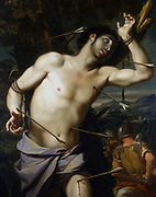 St Sebastian' (dc288) Christian martyr Roman soldier and Captain of the Praeterian Guard. Executed under Emperor Diocletian.  School of Giovanni Domenico Cerrini, called Cavaliere Perugino (1609-1681). Oil on canvas.  Private collection.