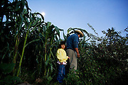 Father and daughter look through their corn field for eggs laid by their free range chickens in Santa Martha Latuvi, part of the Pueblos Mancomunados, a network Zapotec villages in the Sierra Norte Mountains of Oaxaca state, Mexico on July 14, 2008.