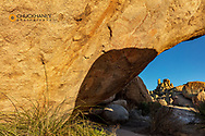 Native American pictographs at Council Rocks in the Dragoon Mountains in the Coronado National Forest, Arizona, USA