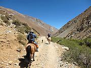 Horse-riding in the Cochiguaz Valley, near Pisco Elqui, Chile