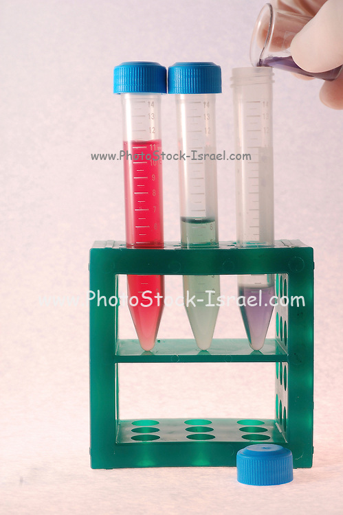 Adding chemicals to 3 test tubes in a tube rack