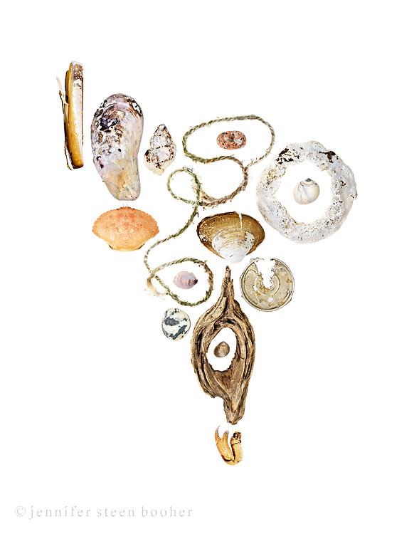 From top to bottom, left to right: Row 1: Razor Clam (Ensis directus), lobster trap rope, Horse Mussel (Modiolus modiolus), Common Slipper Shell (Crepidula fornicata)  Row 2: pink granite beach stone, Rock Crab (Cancer irroratus), driftwood, Common Periwinkle (Littorina littorea)  Row 3: Waved Whelk (Buccinum undatum), Quahog (Mercenaria mercenaria), severely worn shell, probably Quahog, crab claw, aluminum can top, Moon snail (Lunatia heros), beach stone