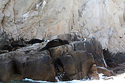 Sea Lions at the Land's End, Cabo San Lucas, Mexico<br /> Sea lions sunbathing on the rock formations