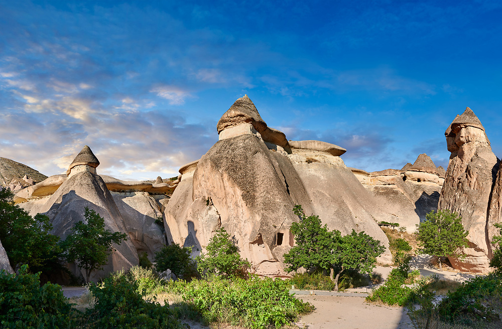 """Pictures & images of the fairy chimney rock formations and rock pillars of """"Pasaba Valley"""" near Goreme, Cappadocia, Nevsehir, Turkey .<br /> <br /> If you prefer to buy from our ALAMY PHOTO LIBRARY  Collection visit : https://www.alamy.com/portfolio/paul-williams-funkystock/cappadociaturkey.html (TIP refine search - type which part of Cappadocia into the LOWER search box)<br /> <br /> Visit our TURKEY PHOTO COLLECTIONS for more photos to download or buy as wall art prints https://funkystock.photoshelter.com/gallery-collection/3f-Pictures-of-Turkey-Turkey-Photos-Images-Fotos/C0000U.hJWkZxAbg"""