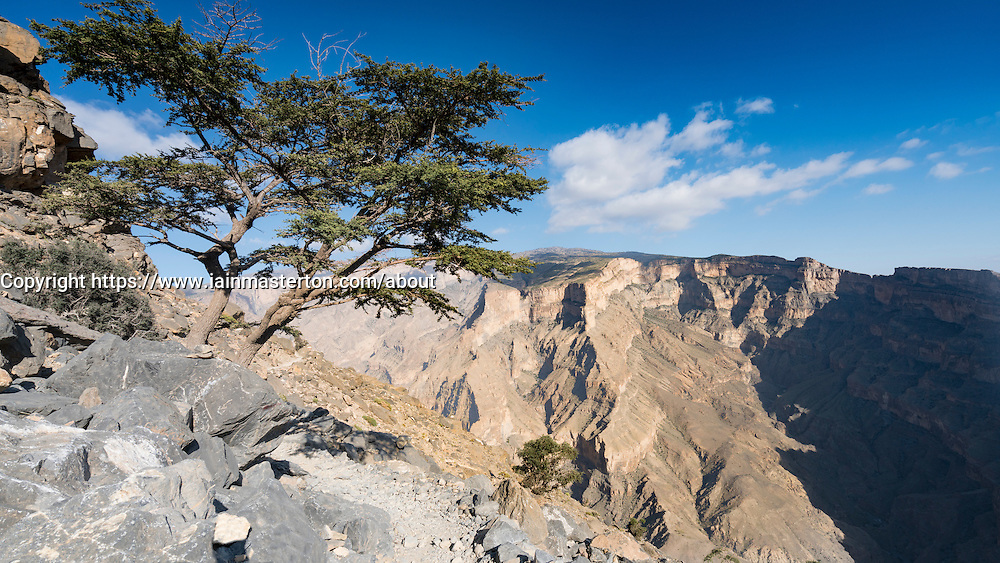 View of canyon at  Wadi Nakhr, at Jebel Shams in Western Hajar mountains of Oman