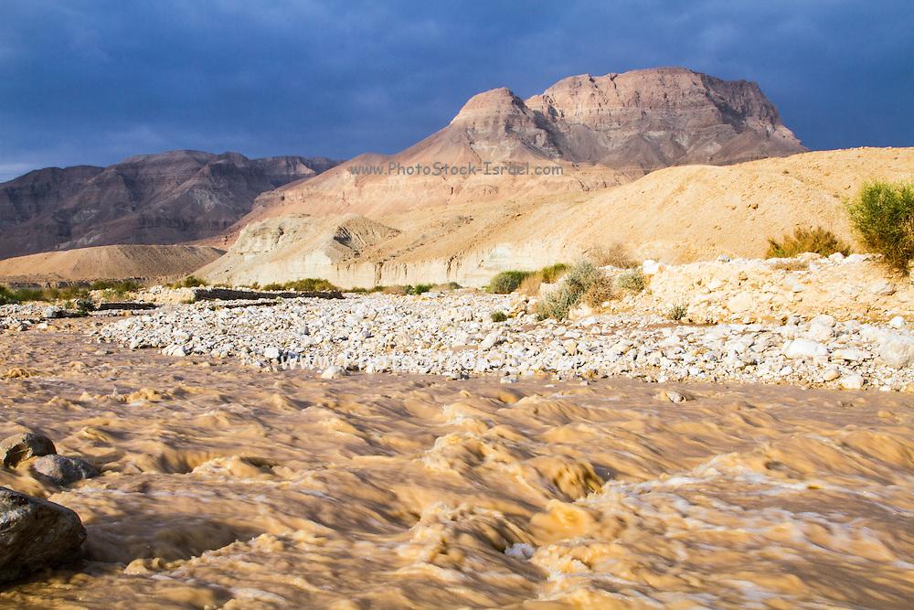 winter flash flood in the Judean desert, israel